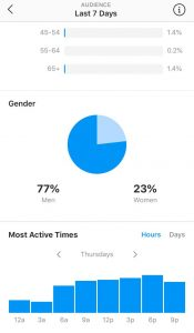 audience insights 2 gender