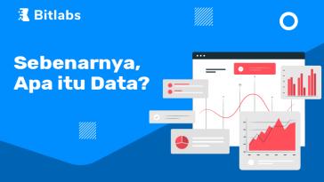 apa itu data
